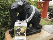 Photos - Bangalore